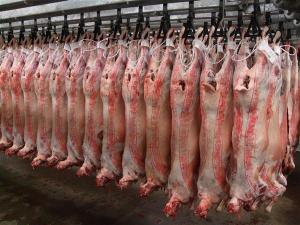 Lamb_Carcass_Cut_Whole_lamb_